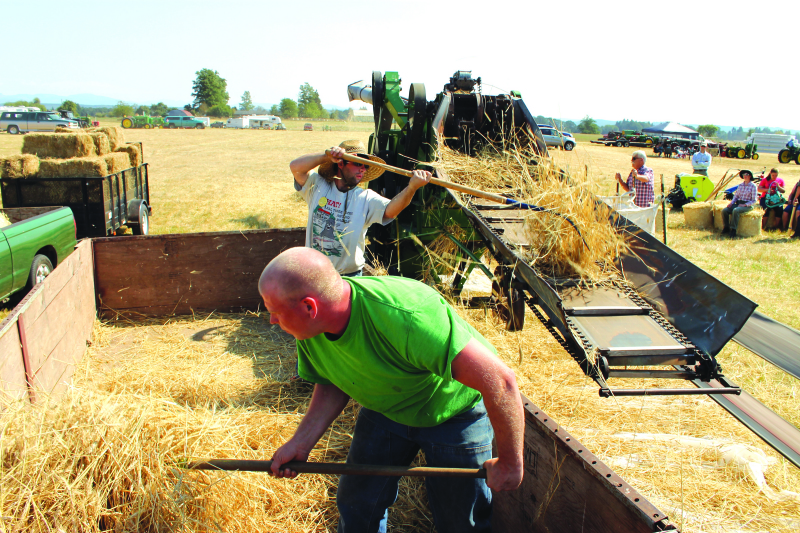 Threshing Bee is Community