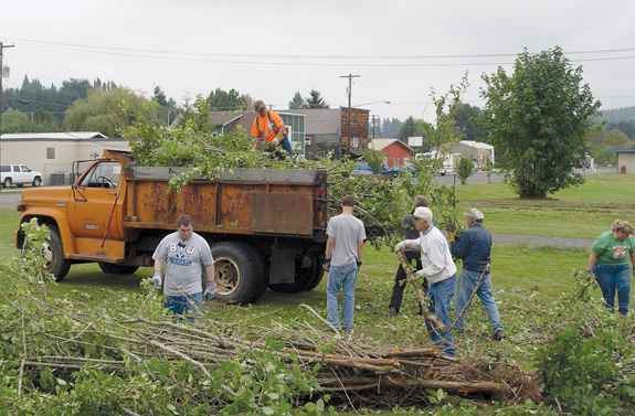 Dozens turn out for National Day of Service projects in Vader