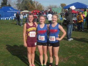 Hoffman, Cook, Kudasik run well at State
