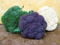 Prepare your garden with frost-resistant veggies