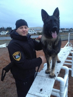 Ciko joins Sheriff's team