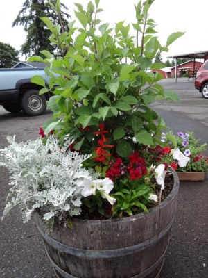 Gearing up for the Fair with Lovely Flowers