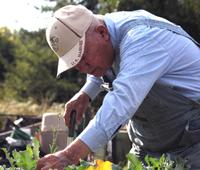 Ryderwood gardener expanding on his long-time hobby