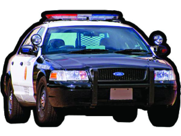 Crime Reports 8.19.15