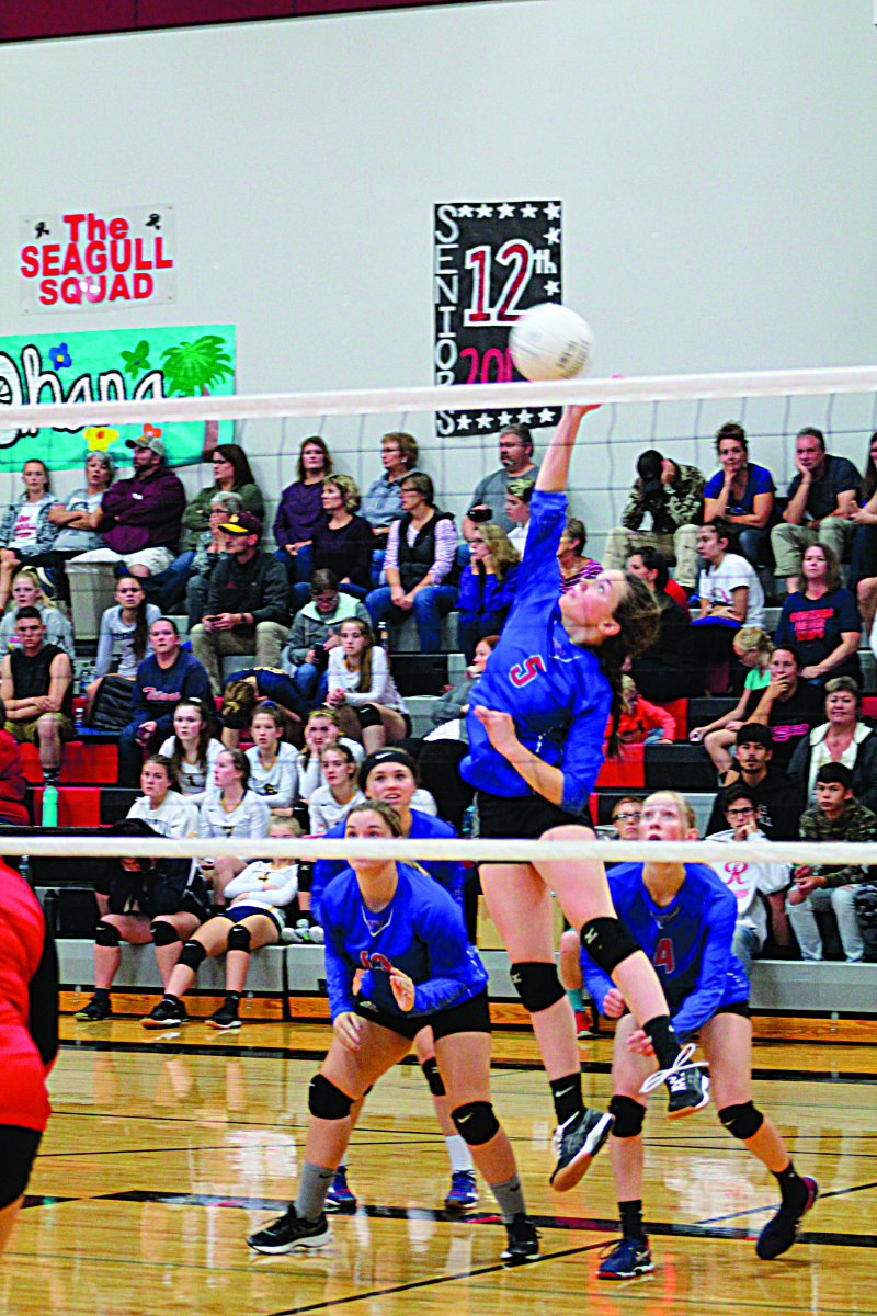 Lady Gulls split rivalry matches; Ocosta wins tournament
