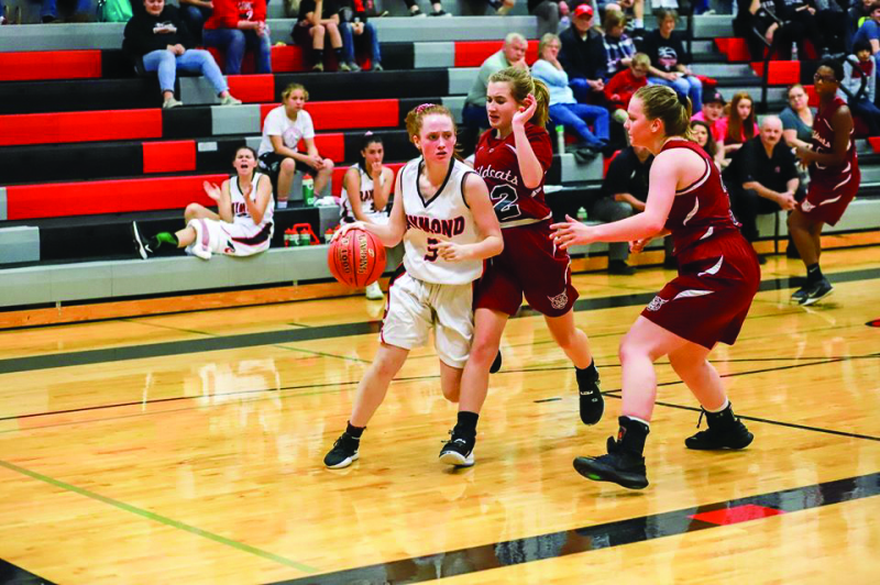 Lady Seagulls blast past Vikes, 'Cats