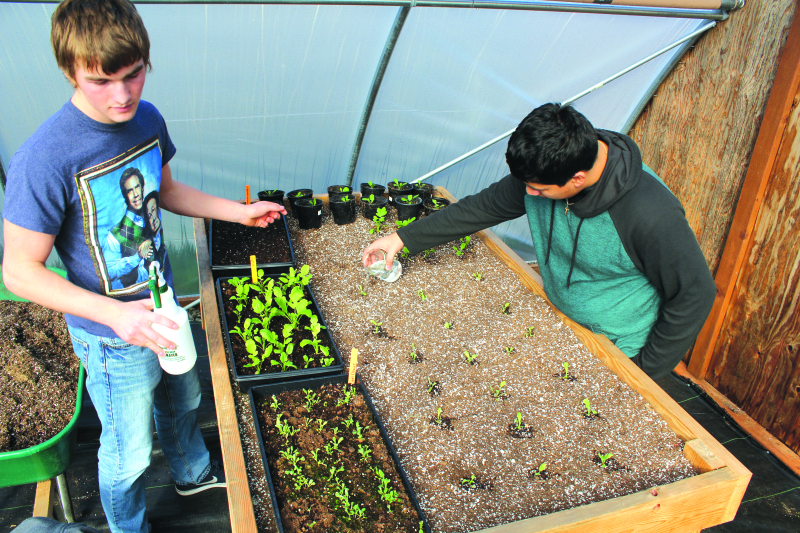 South Bend students develop green thumbs in class