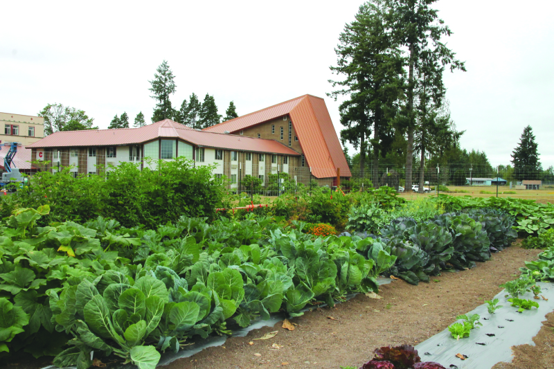 The garden at St. Mary's Mission provides fresh food for their daily meals.