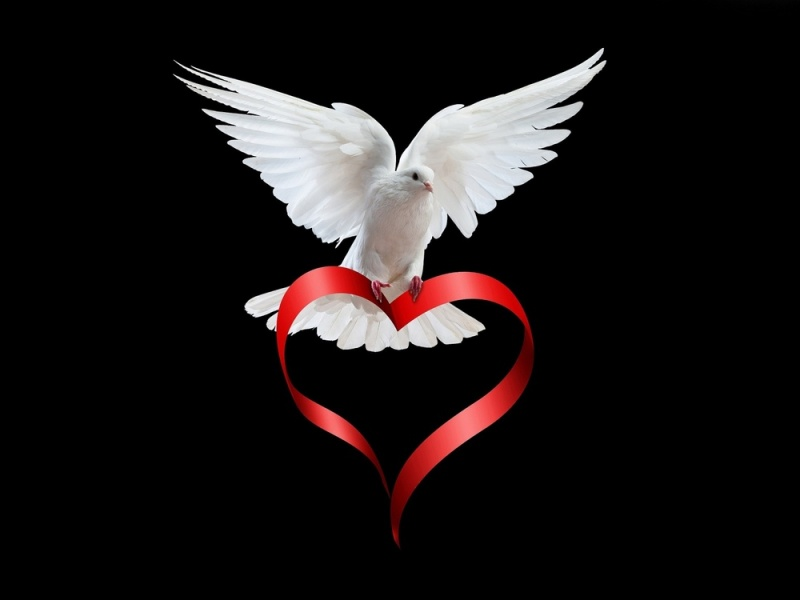 In Loving Memory of Linda Allen