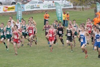 Toledo/Winlock Cross Country Competes at State