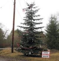 Local residents remember loved ones through second annual Memorial Tree