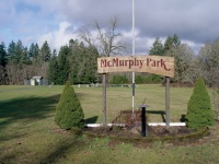 Big plans, little city: Vader's Park Board hopes to electrify McMurphy Park by the end of this year