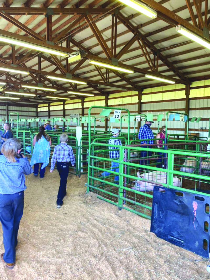 Locals support FFA and 4H members