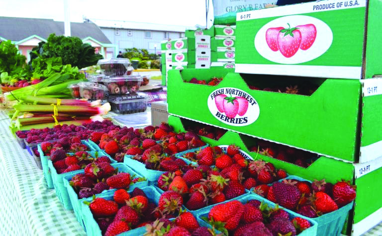 Raymond Farmers Market opens Friday