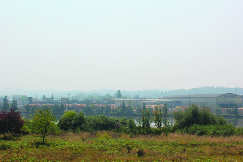 Air quality: smoke on the water