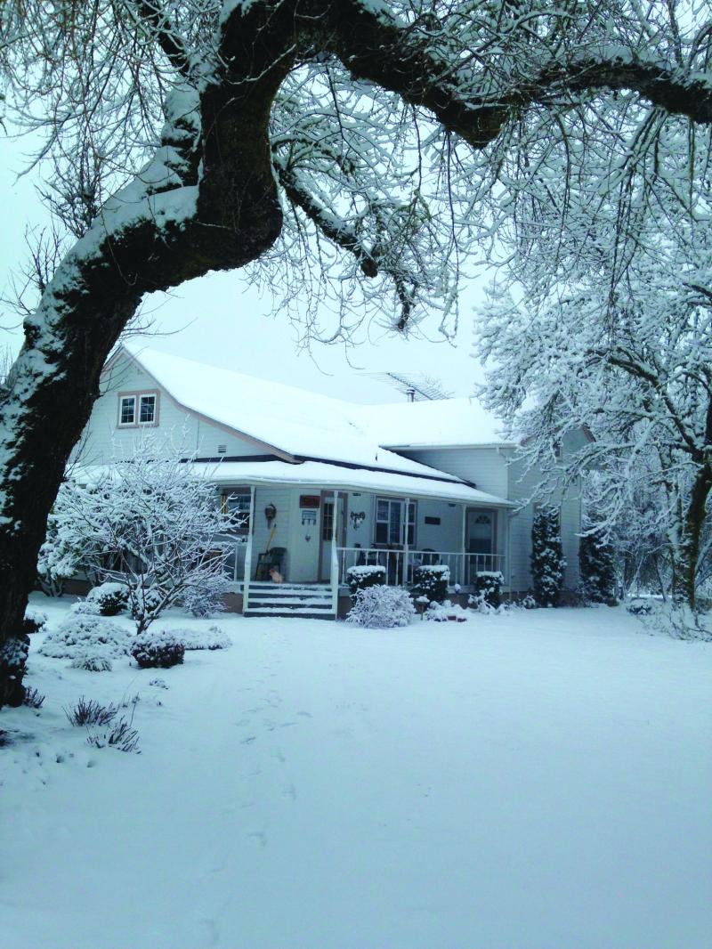 A winter wonderland in Lewis County